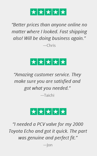 5 star rated by our customers on trustpilot